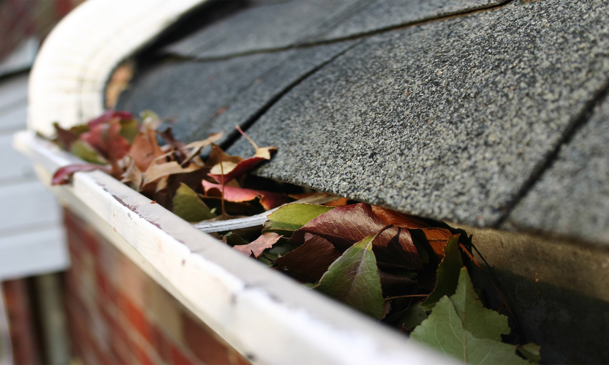 Eavestrough - Gutter Cleaning