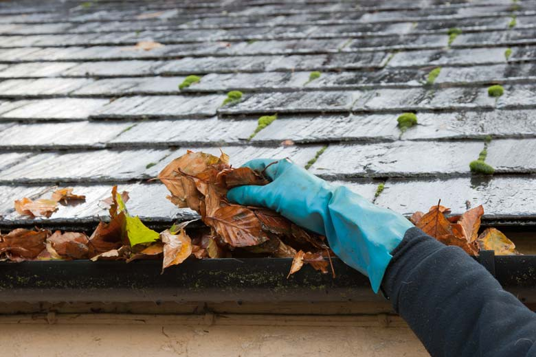 Eavestrough - Gutter Cleaning in Scarborough