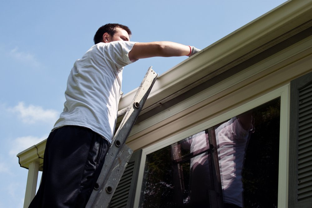 8 Uncommon things that are commonly found in gutters
