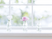 Keep your home's windows sparkling clean