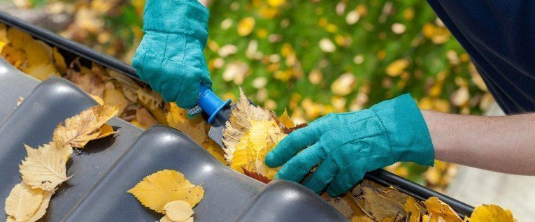 Reasons why you should clean your gutters