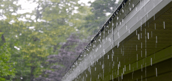 Gutter clean-up needs to be done properly. Check out the stuff you need to clear out your gutter.