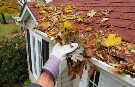pulling out leaves from gutter